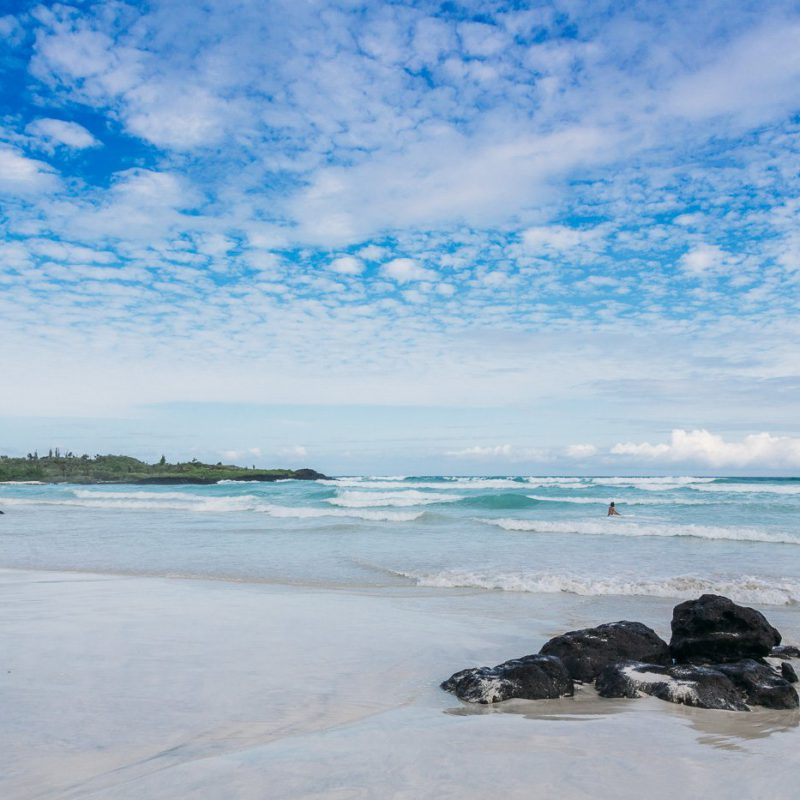 Galapagos-Tortuga-Bay-Turtle-Reserve-57-of-58-June-15