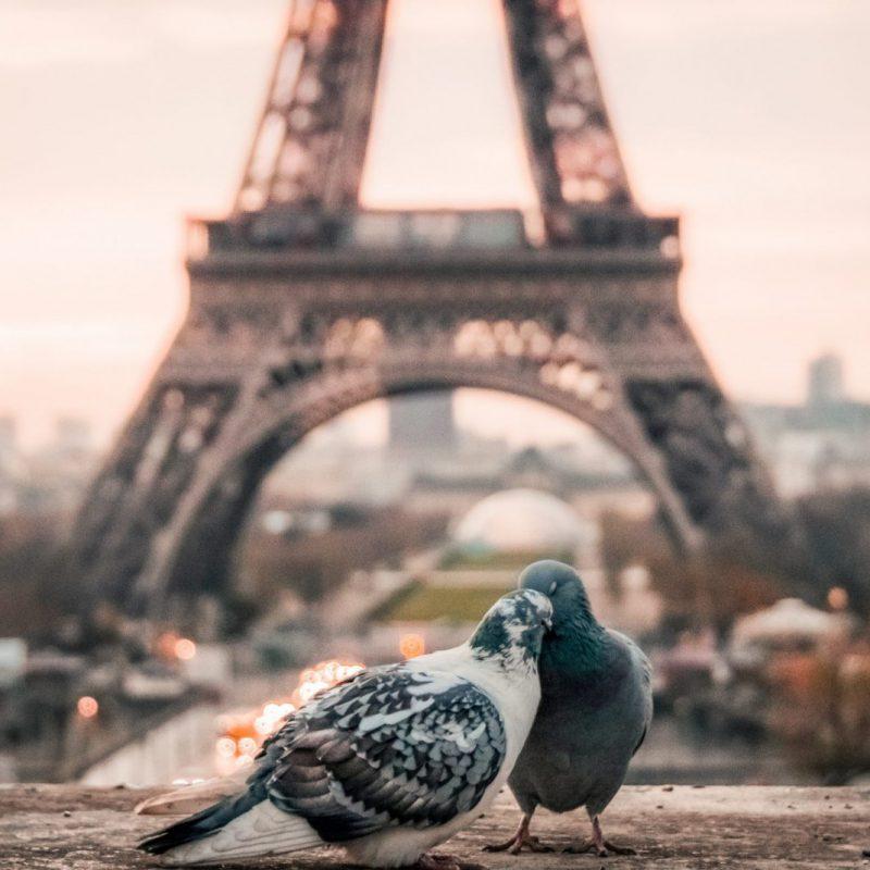 Paris-2560x1440
